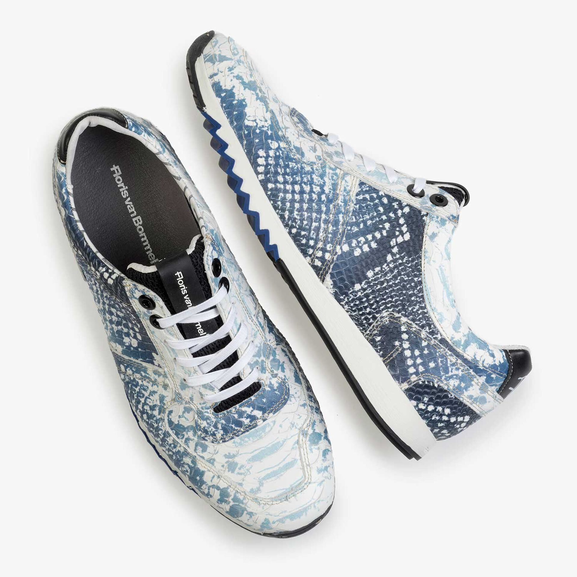 Dark blue sneaker with snake print