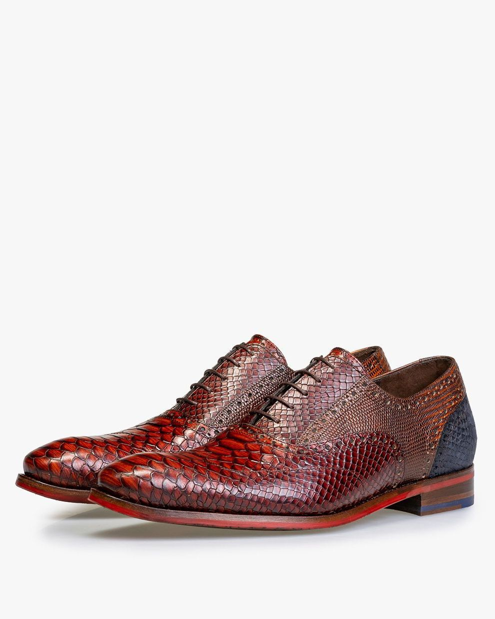 Leather lace shoe with snake print – cognac-coloured – 19104/16 ...